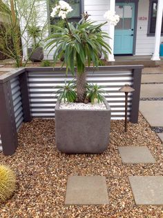 Clean, fresh, modern Camille Beehler Landscape Design Newport Beach, Landscape Design, Planter Pots, Yard, Fresh, Modern, Projects, Log Projects, Patio