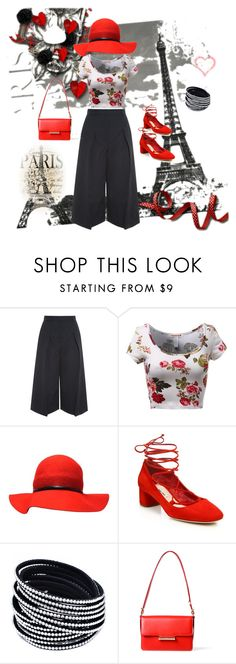 """InlovewithParis"" by ak1995 ❤ liked on Polyvore featuring Erdem, Miu Miu, Jason Wu, women's clothing, women, female, woman, misses and juniors"