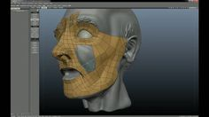 face retopo in 3d coat
