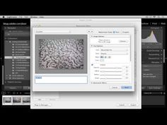 Lightroom 5: Exporting Images
