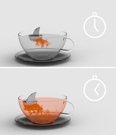 sharky tea!
