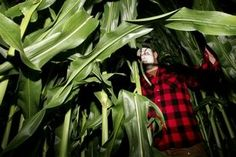 Swamp haunted corn maze? hhmmmm Halloween plans!! lol