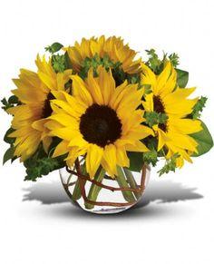 Sunny Sun Flowers, Sunny Sun Flower Bouquet - Teleflora.com