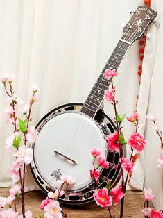 Augusta's Banjolele (Banjo Ukulele) I've really grown to love the banjo