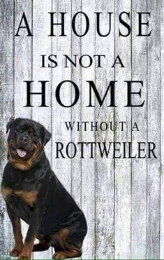 rot #DogQuotes