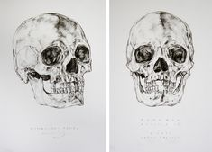 Facial recontsruction | drawings by Agnes Dombovari, via Behance