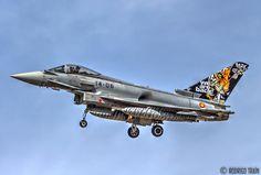 Resultado de imagen de eurofighter ala 14