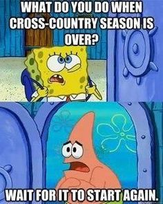 Seriously though.. this is my life right now ... except for softball and basketball but im still waiting.......
