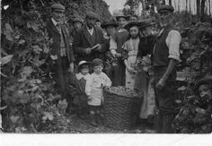 Picking Hops in Sittingbourne in 1908. I remember there still being plenty of hop fields around in the 1970s