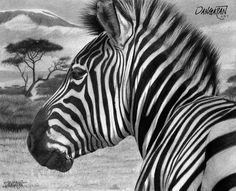 Zebra by dangaranart.deviantart.com on @DeviantArt
