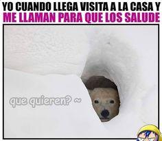 Imagenes de Humor #memes #chistes #chistesmalos #imagenesgraciosas #humor www.megamemeces.c... ➡➡ http://www.diverint.com/memes-chistosos-postureo-postureo