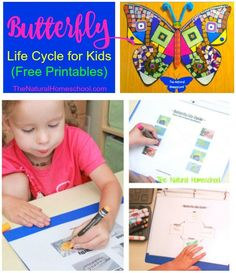 Spring is a great time to learn all about the life cycle of butterflies! Arts, activities and free printables!