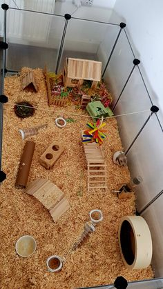 New hamster enclosure Diy Hamster Toys, Cool Hamster Cages, Gerbil Cages, Baby Hamster, Bunny Cages, Hamster House, Hamster Stuff, Hamsters As Pets, Cute Hamsters