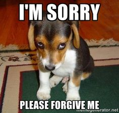 I'm sorry Please forgive me - Sad Puppy | Meme Generator