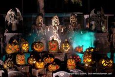 Scott Stoll Stolloween- Haunters Hangout Halloween