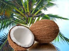 Coconuts are rich in calories, vitamins, minerals and water. A complete food. Coconuts, Minerals, Vitamins, Fruit, Water, Food, Gripe Water, Essen, Meals