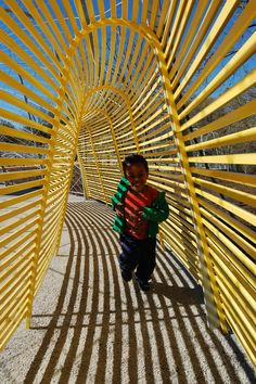 Woodland Discovery Playground - I like that you can see through the wall.