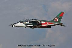 Portugal Air Force Dassault  Dornier Alpha Jet A  15202 winker