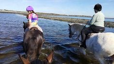 Award winning equestrian vacations in wi. Ireland Vacation, Ireland Travel, Galway Ireland, Cork Ireland, Riding Holiday, Beach Rides, Horse Ears, Ireland Landscape, Horses For Sale