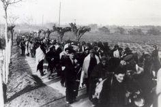 Retirada de combatientes durante la guerra civil española.- FUNDACIÓN F. LARGO CABALLERO