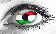 Hungary, Google