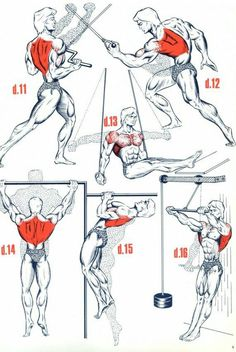 "Do all of these...awesome. work the back, get the ""v"" shape...lats make that happen -dc"