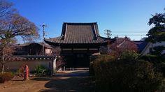 安国寺 釈迦堂です 残念なことに本堂は消失しています(消失は大正のようです) その本堂跡からの撮影です 釈迦堂仏像は重要文化財でもありますし枯山水庭園もあります 見所の多いお寺ですよ  そして桜の季節には釈迦堂の表側の桜が綺麗です ライトアップも素敵ですよ 近いうちに昨年の桜のライトアップ写真を投稿しますのでぜひとも花見の予定を立てていただきたいです #鞆の浦 #鞆 #安国寺 #備後安国寺 #安国寺釈迦堂 #tomonoura #tomo by amochinmi
