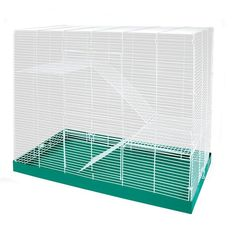 Shop for Chew Proof 3 Level Chinchilla/Ferret/Rat Cage - green. Get free delivery On EVERYTHING* Overstock - Your Online Small Animal Supplies Store! Dumbo Rat, Rat Cage, Chinchilla, Rats, Pet Supplies, Hamster Stuff, Ferrets, Front Doors, Simple