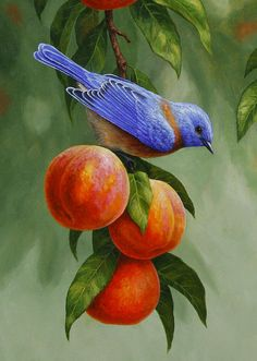 Bluebird And Peaches Greeting Card 1 Print By Crista Forest