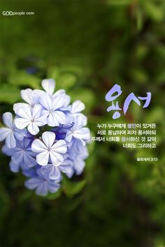 Bible Quotes, Bible Verses, Korean Language Learning, Word Of God, Poem, Christianity, Religion, Faith, Words