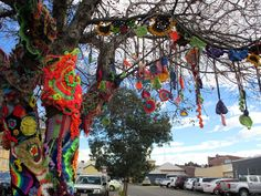 more yarnbombing for Jumpers & Jazz 2016m Warwick, Qld, Australia - another collaborative tree covering by freeform crocheters from all around the world, coordinated by Prudence Mapstone www.knotjustknitting