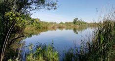Kiskunsági Nemzeti Park - A legkisebb gyöngyszem River, Outdoor, Outdoors, Outdoor Games, The Great Outdoors, Rivers
