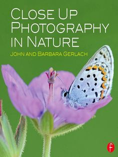 Tip No. 10 Learn from the Pros- Before diving into butterfly photography and taking fab photos in the flower garden, it's helpful to understand the opportunities and challenges of nature and butterfly photography. Who better to teach you, than two professional nature photographers?
