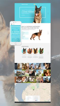 Zoo Responsive Website Template - This Web Design Is A Responsive Dog Breeding Website Theme That Was Made To Operate Faultlessly Across A Wide Range Of Devices And Web Browsers Give Some Thought To This Classy Layout For Cynologist Design Ios, Email Design, Dog Design, Large Dog Crate, Large Dogs, Layout, Pag Web, Design Responsive, Responsive Site