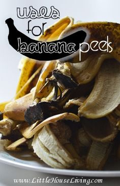Amazing Uses for Banana Peels!  I had no idea that you could do so many things with old banana peels.