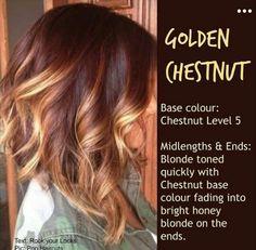 Golden Chestnut♡