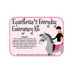 Everyday Emergency Kit