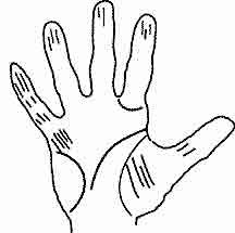PALMISTRY WORLD How to Read Palms, Hands, Fingers, Lines
