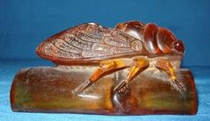 Gather The animal amber statue belle Cigale du Thibet
