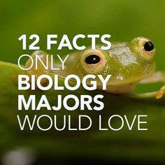 12 faits que les majors de la biologie aimeraient - Biology Major. Biology Facts, Biology Major, Science Biology, Science Education, Life Science, Science Nature, Marine Biology Jobs, Cool Science Facts, Science Quotes