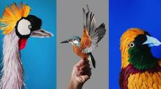 Realistic Painting of Birds