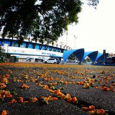 Estádio Olímpico Monumental - Porto Alegre, RS, Brazil