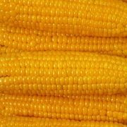 How to Bake Corn on the Cob in the Oven With Tin Foil | eHow