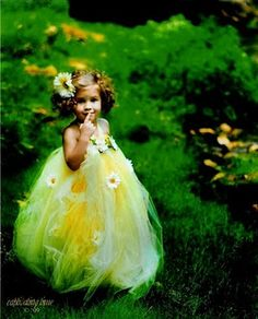 Fairy tutu-adorable flower girl dress!!!