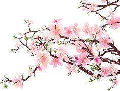 cherry blossom - Buscar con Google