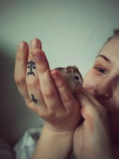 me and my hamster jofree