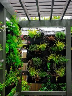 29 most amazing living wall and vertical garden ideas 8 ~ Beautiful House Lovers Outdoor Privacy, Backyard Privacy, Pergola Patio, Pergola Plans, Porch Privacy, Privacy Fences, Backyard Trampoline, Modern Garden Design, Patio Plants