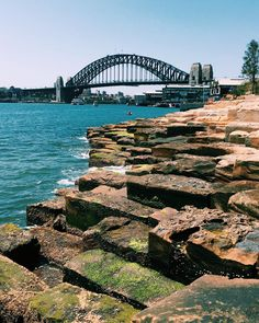 Sydney Harbour Bridge from Barangaroo Headland Park #sydney #barangaroo #sydneyharbour #harbourbridge #australia #sydneyharbourbridge #instagood #love #ilovesydney #seeaustralia #australiagram #cityofsydney #sydneycity #vscocam #barangarooheadlandpark #downunder #friday #igsydney #landscape #lunch #newsouthwales #seesydney #straya #sydneystyle #vsco #wander #iphone6splus #madeoniphone #iphone #iphoneography by craigsiczak http://ift.tt/1NRMbNv
