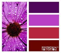 #patternpod #purple #flower