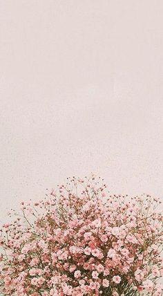 fond d& flores IPhone Background Pictures, Spring - Inside Korea J . Tumblr Wallpaper, Wallpaper Pastel, Frühling Wallpaper, Floral Wallpaper Iphone, Spring Wallpaper, Aesthetic Pastel Wallpaper, Cute Wallpaper Backgrounds, Pretty Wallpapers, Iphone Backgrounds